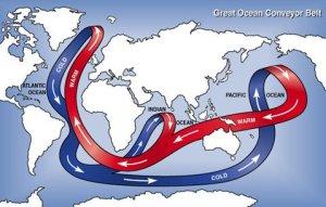 Great Ocean Conveyor Belt. Image courtesy Argonne National Laboratory