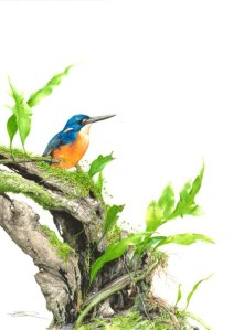 """Azure kingfisher"" by Belinda Kurczok, Finalist - paintings."