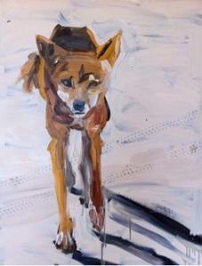 'Fraser Island Dingo II' by Tanya Harricks, Finalist, Paintings, Waterhouse 2013.