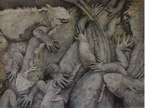 'Hand scale claw Galapagos Iguana' by Bernard O'Grady. Waterhouse finalist