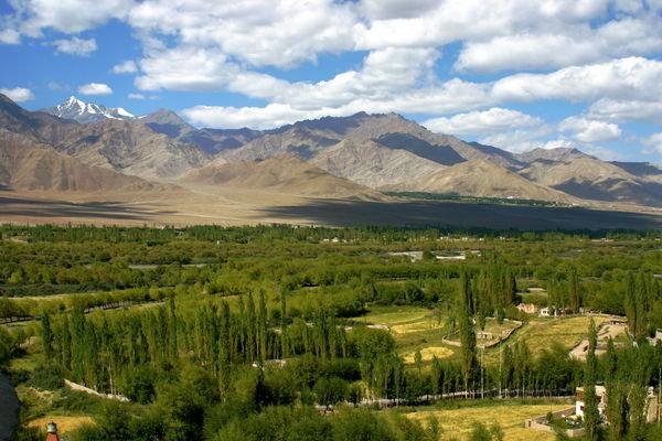 conserving the fertile crescent biodiversity revolution