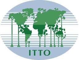 Logo_ITTO.jpg