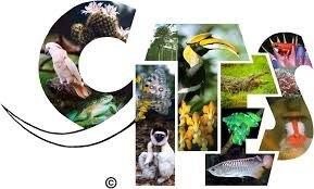 CITES_logo.jpg